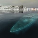 The Sunken yacht in Antarctica