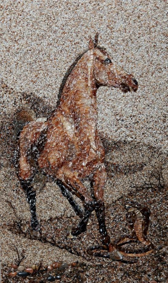 A Horse (Credit Svetlana Ivanchenko)