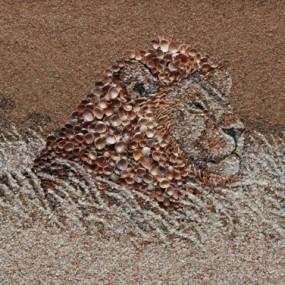 Stunning Art Work Through Shell And Sand (Photo Gallery)