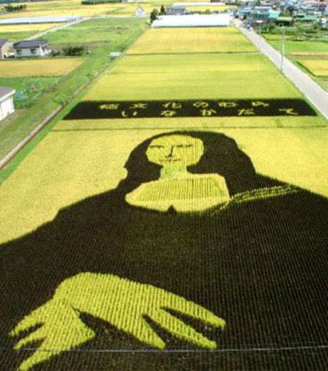 Figure 10: A Rice Field With Famous Picture Of Mona Lisa
