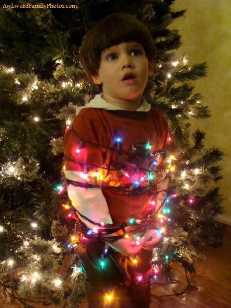 Picture 39: Funny Christmas Photo