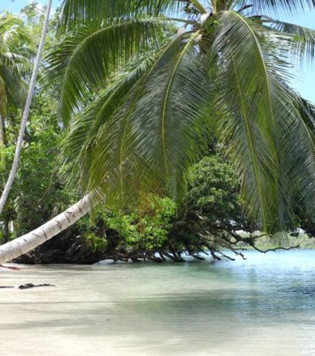The island of Tavanipupu was the final place in the visit of prince william and Kate Middleton in South Pacific