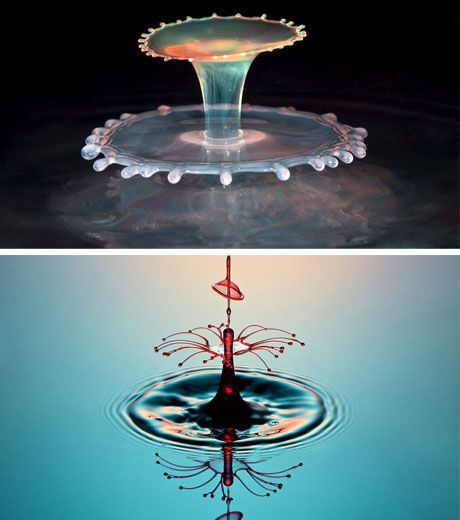 The Amazing Water Droplet Photo (Credit Corrie White)