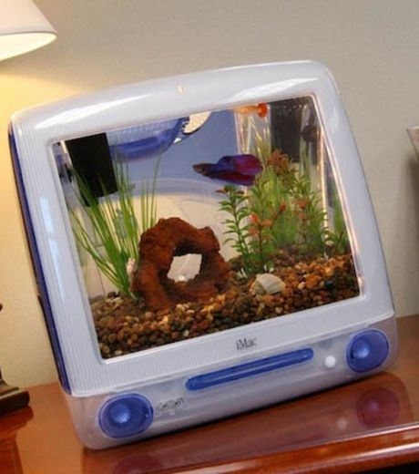 An Aquarium In An old IMac