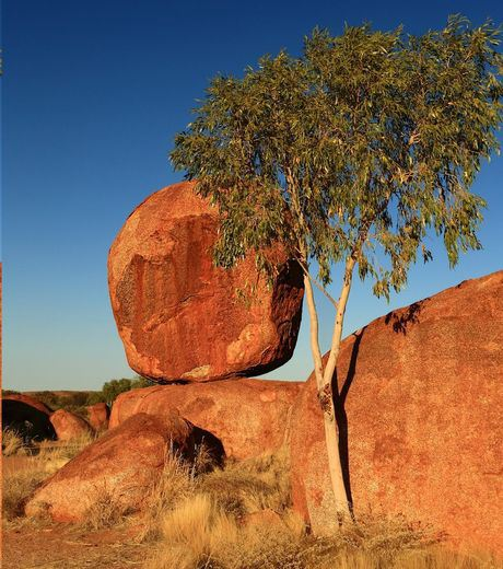 "The ""Devil's Ball"" in Australia"