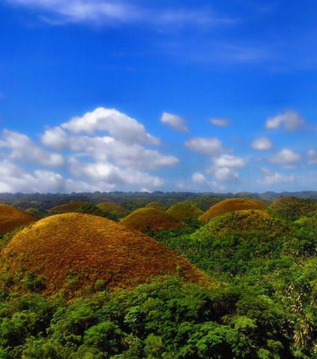 The Chocolate Hills of Bohol Island in the Philippines. This place Consists of 1,268 Cone-shaped Hills Of Similar Size