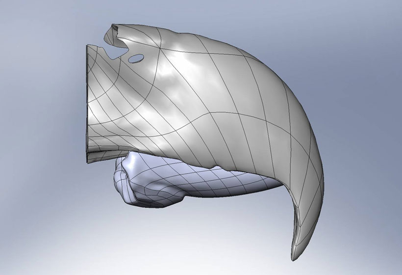 The Design Of the 3D Beak