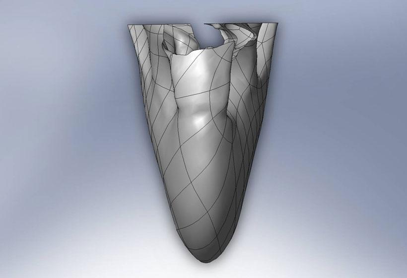 Design Of the 3D Beak