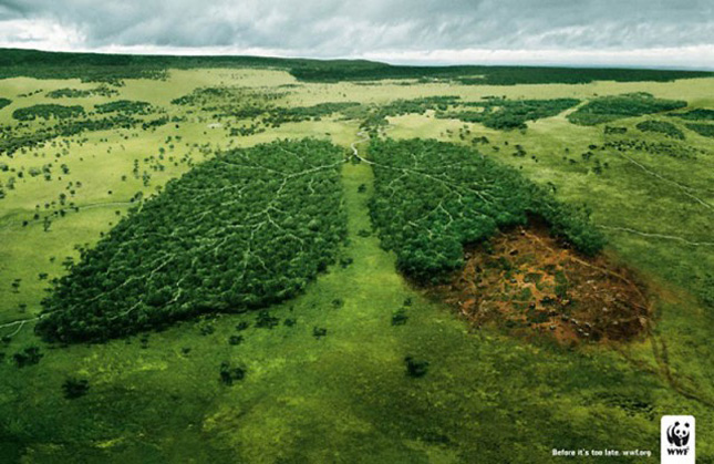 A shocking add By WWF