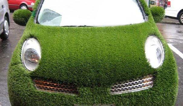 A lawn on a car Dipfan