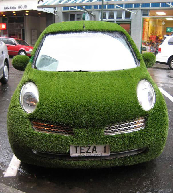 A lawn on a car Dipfan
