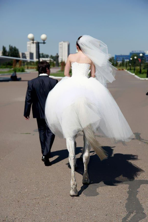 Seems as the bride has body of a horse
