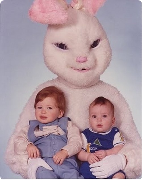 Top Funny rabbit disguises