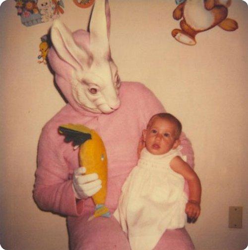 rabbit-disguises-20