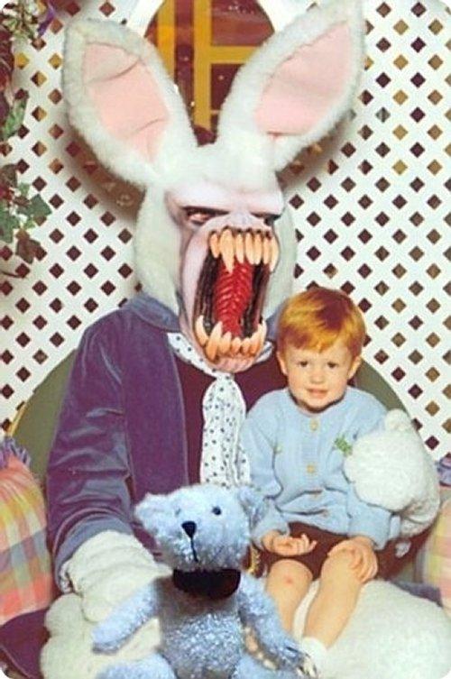 rabbit-disguises-22