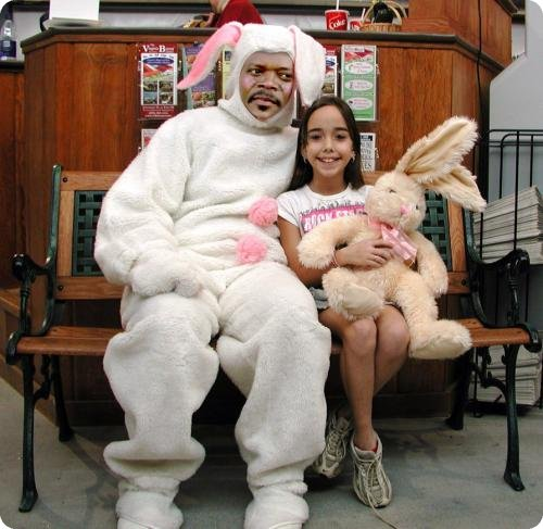 Top 30 Funny Rabbit Disguise Photos