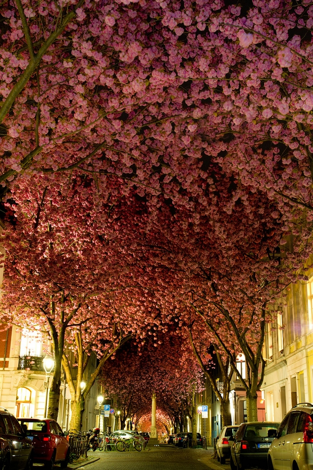 Street Bonn, Germany