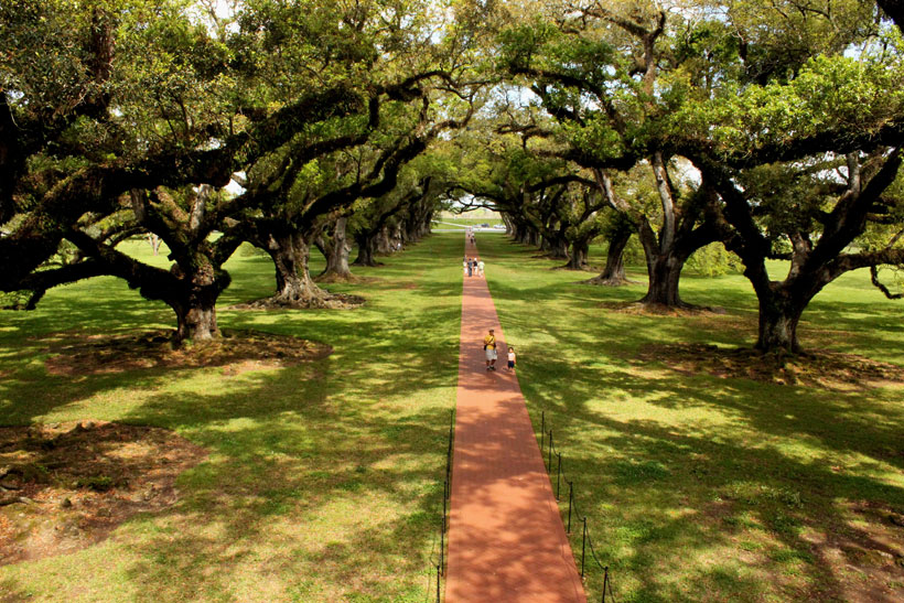 Oak Alley Plantation, Lousiana