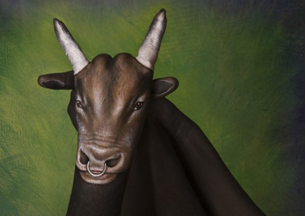 Guido Daniele Hand Painting Cow