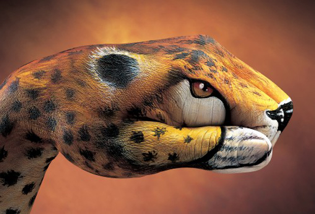 Cheetah-20011-499x340=Guido Daniele Ultra Realistic Hand Painting