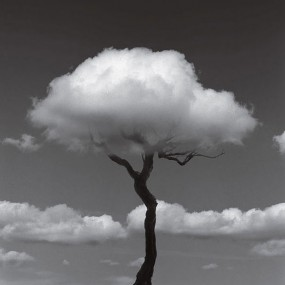 The 14 Mind-blowing Black And White Photographic Illusions (Photo gallery)