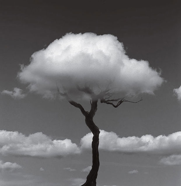 Chema Madoz Black And White Illusions 2