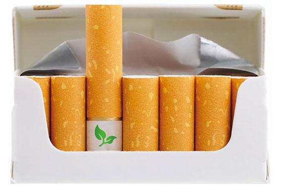 vos-megots-de-cigarettes-transformes-en-plantes-graces-a-des-semences1