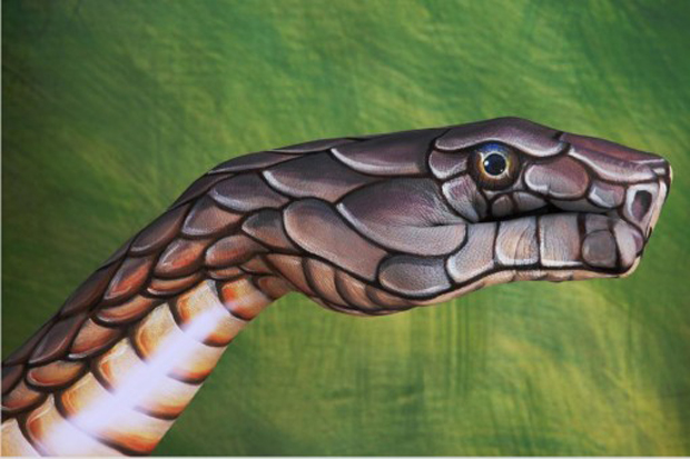 Cobra-on-green1-510x340--Guido Daniele Ultra Realistic Hand Painting