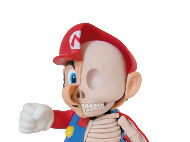 Dissected Anatomy Model Of Mario
