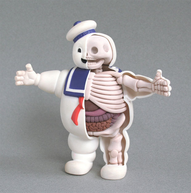 Dissected Anatomy Model Of A Pop Culture Icon