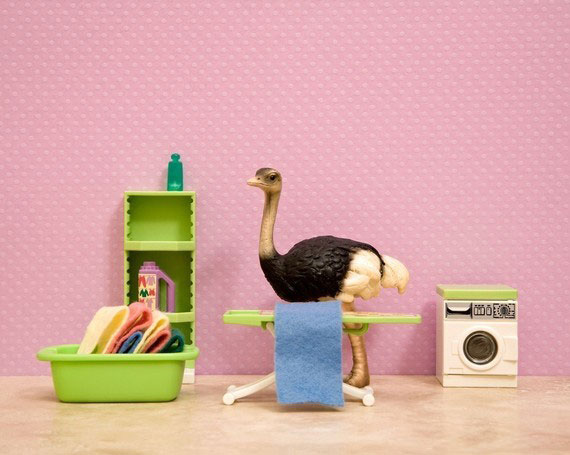 Jeff Friesen: A father uses his children toys to create unusual scenes