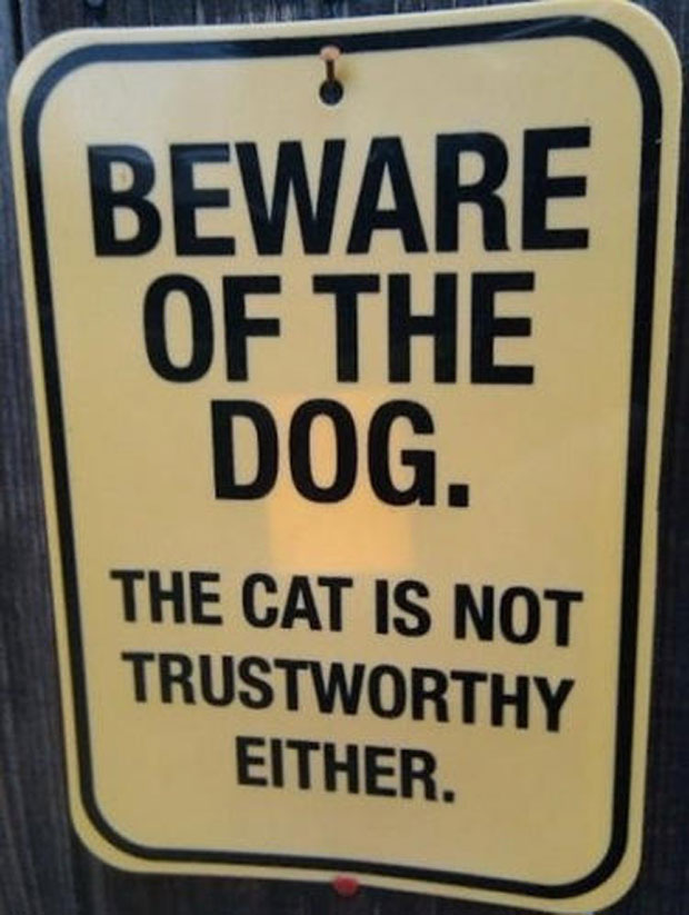 Beware Of Dog. The Cat Is not Trustworthy Either