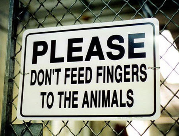 PleaseDon't Feed Fingers  To The Animals