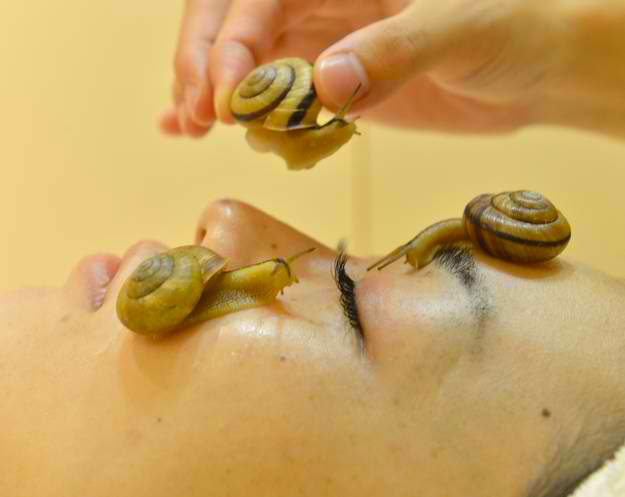 Japanese Anti-Wrinkle Treatment Using Snails