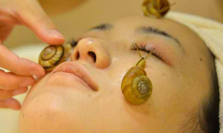 Japanese Anti-Wrinkle Treatment Using Snails