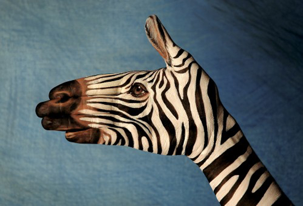 Zebra-on-blu1-Ultra Realistic Hand Painting