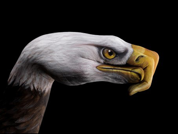 Eagle-Ultra Realistic Hand Painting