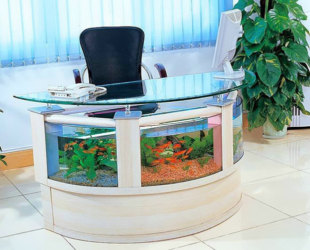 Aquarium with in office table