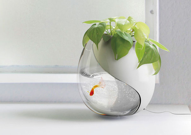 Aquarium with plant pot