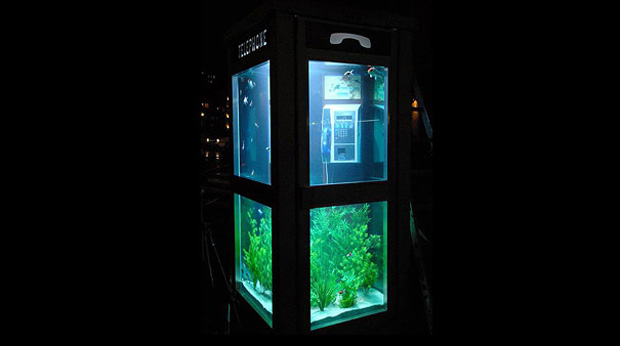 Phone booth aquarium