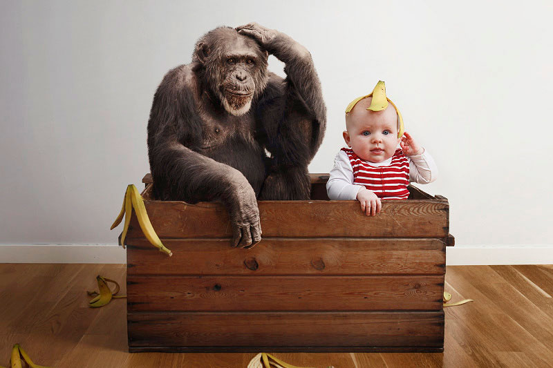 baby sitting beside a monkey