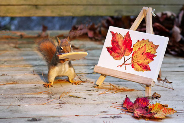 Super Cute Squirrel Painting
