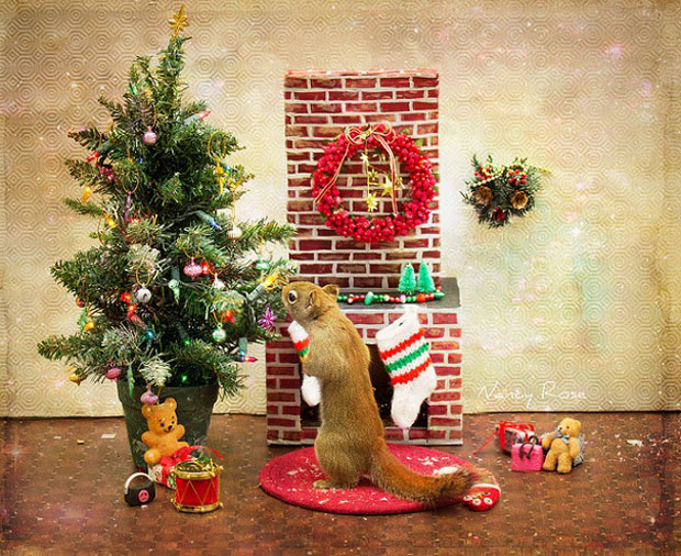 Super Cute Squirrel with Christmas tree