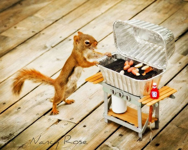 Super Cute Squirrel Barbecue