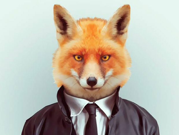 Fox More Smartly Dressed Than Human Beings