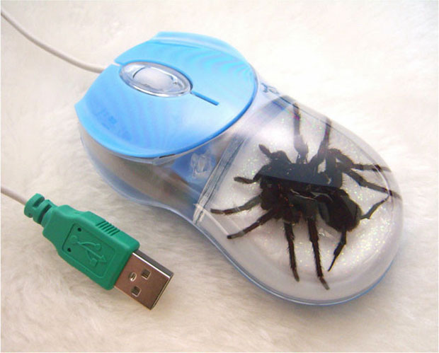 Examples Of Crazy Computer Mouse
