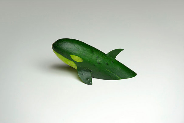 Cucumber Killer Whale-Food And Vegetables Turned Into Crazy Works Of Art