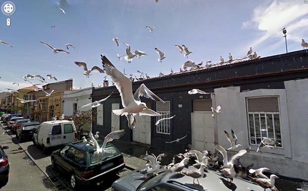 Amazing And Strange Photo Shots From Google Street View