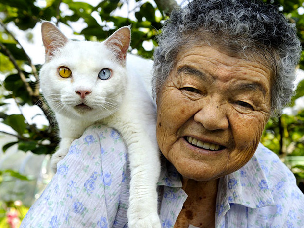 Misao The Big Mama And Fukumaru Cat