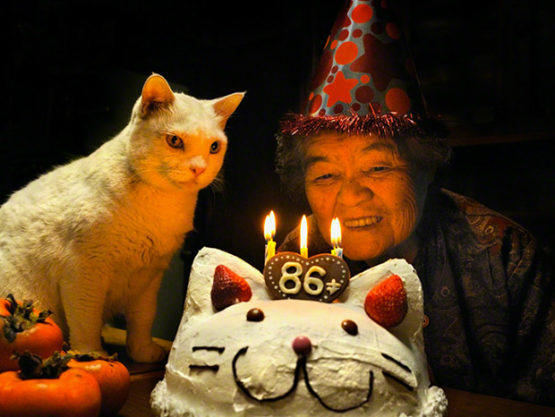 Amazing Love Friendship: Misao, the Big Mama and Fukumaru cute cat-86 Birthday
